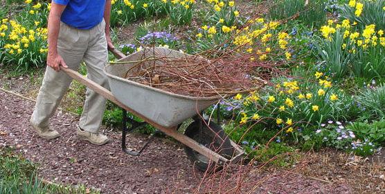 Empresa de jardinería en Sagunto