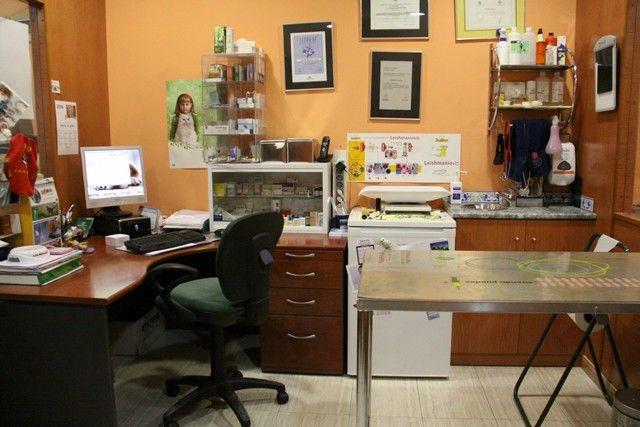Clínica veterinaria Molina de Segura