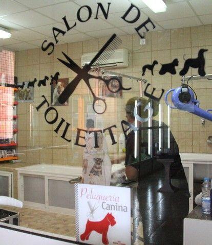 Peluquería canina y felina: Servicios de Megamascotas