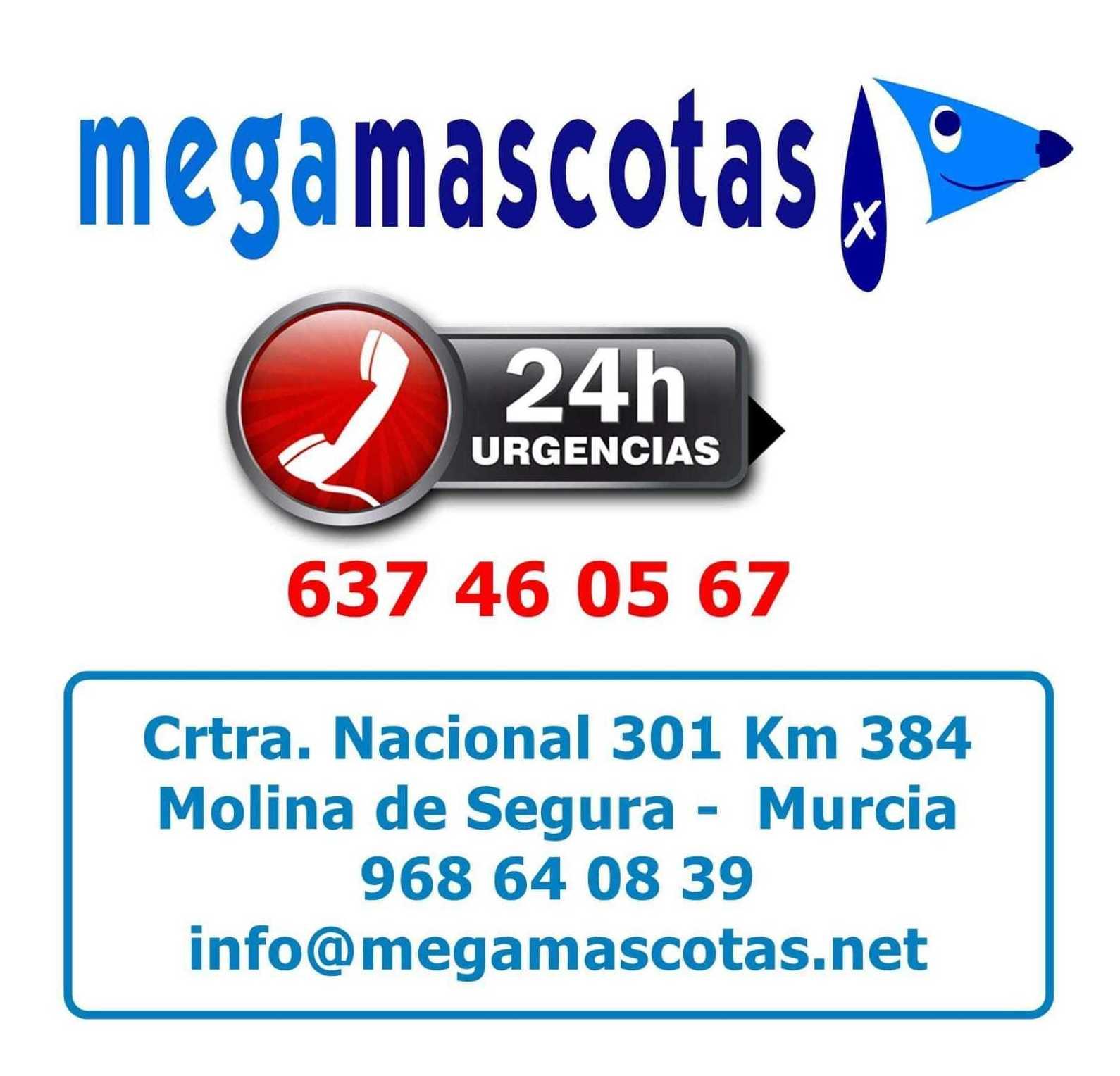 Urgencias veterinarias en Murcia