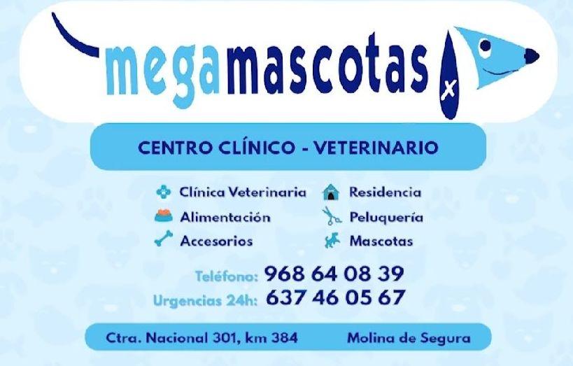 Foto 1 de Veterinarios en Molina de Segura | Megamascotas