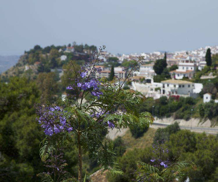 Rent of villa with excellent views in Mijas, town