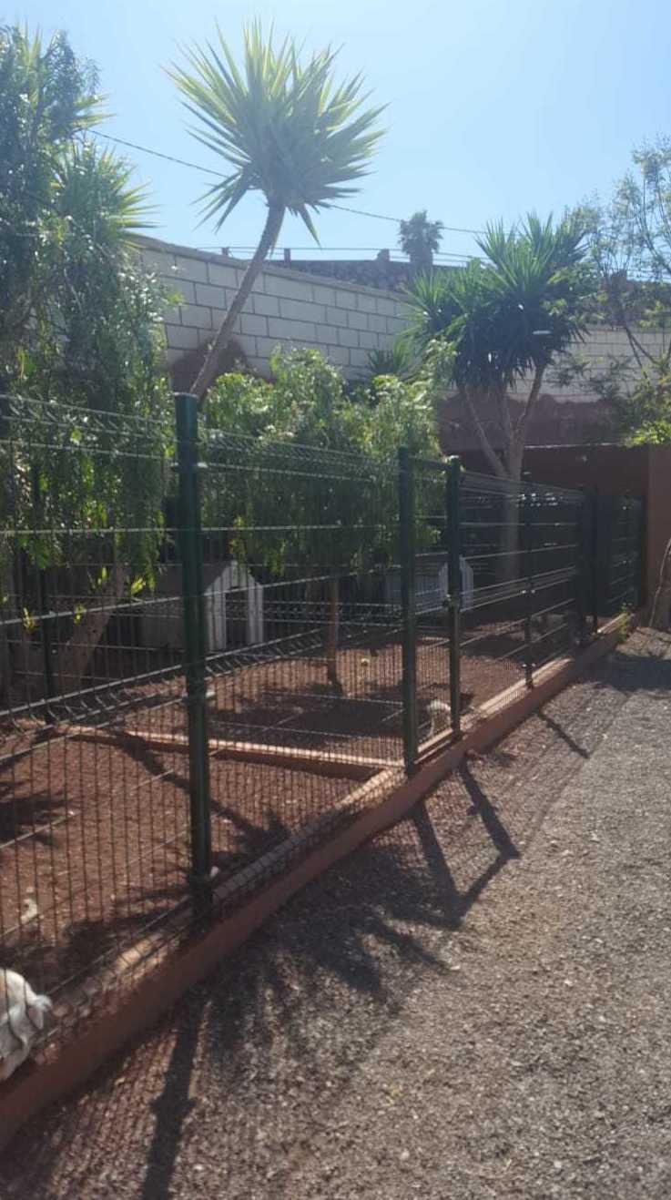Foto 22 de Tiendas de animales en Las Chafiras | Don Perro