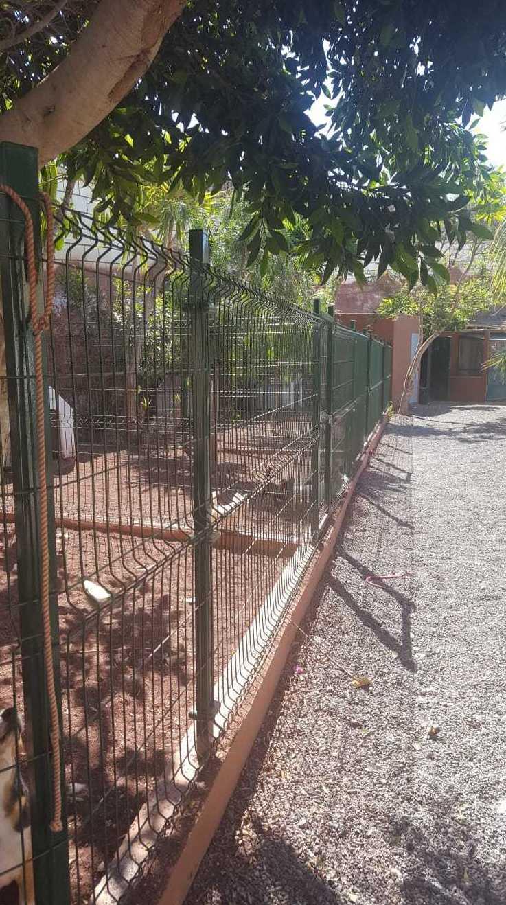 Foto 26 de Tiendas de animales en Las Chafiras | Don Perro