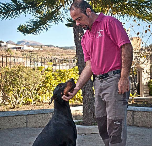 Guardería canina tenerife/Guardería canina san miguel de abona