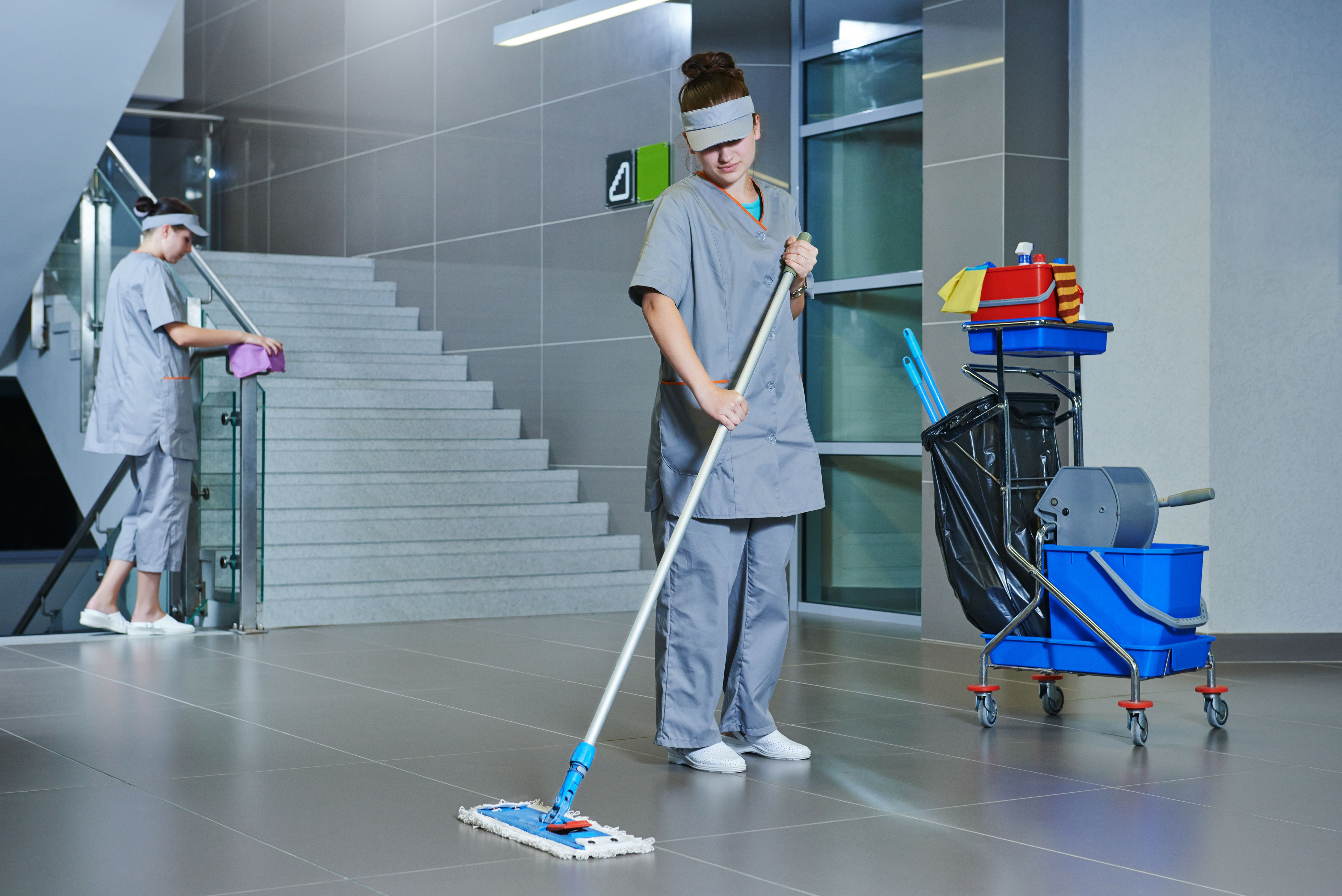 Limpieza  de organismos públicos: Servicios de limpieza de H. M. Assignment Services