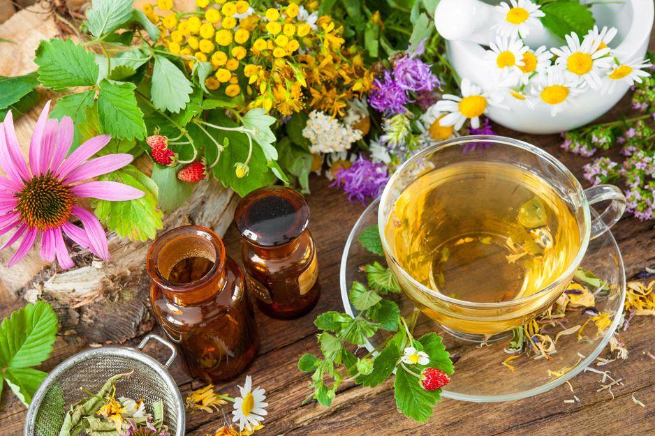 Productos de naturopatía y fitoterapia