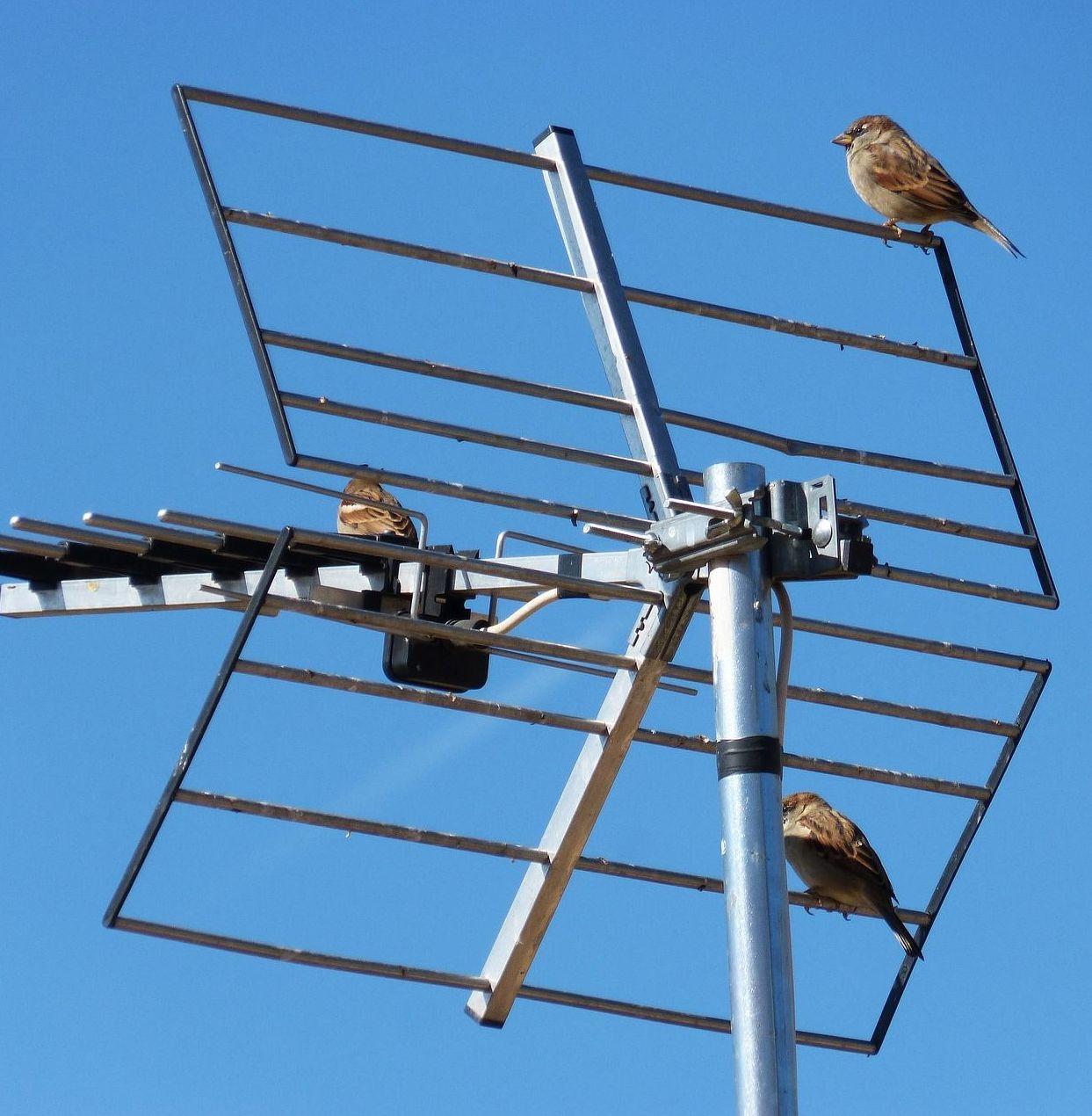 Adaptación de la instalación de antena existente