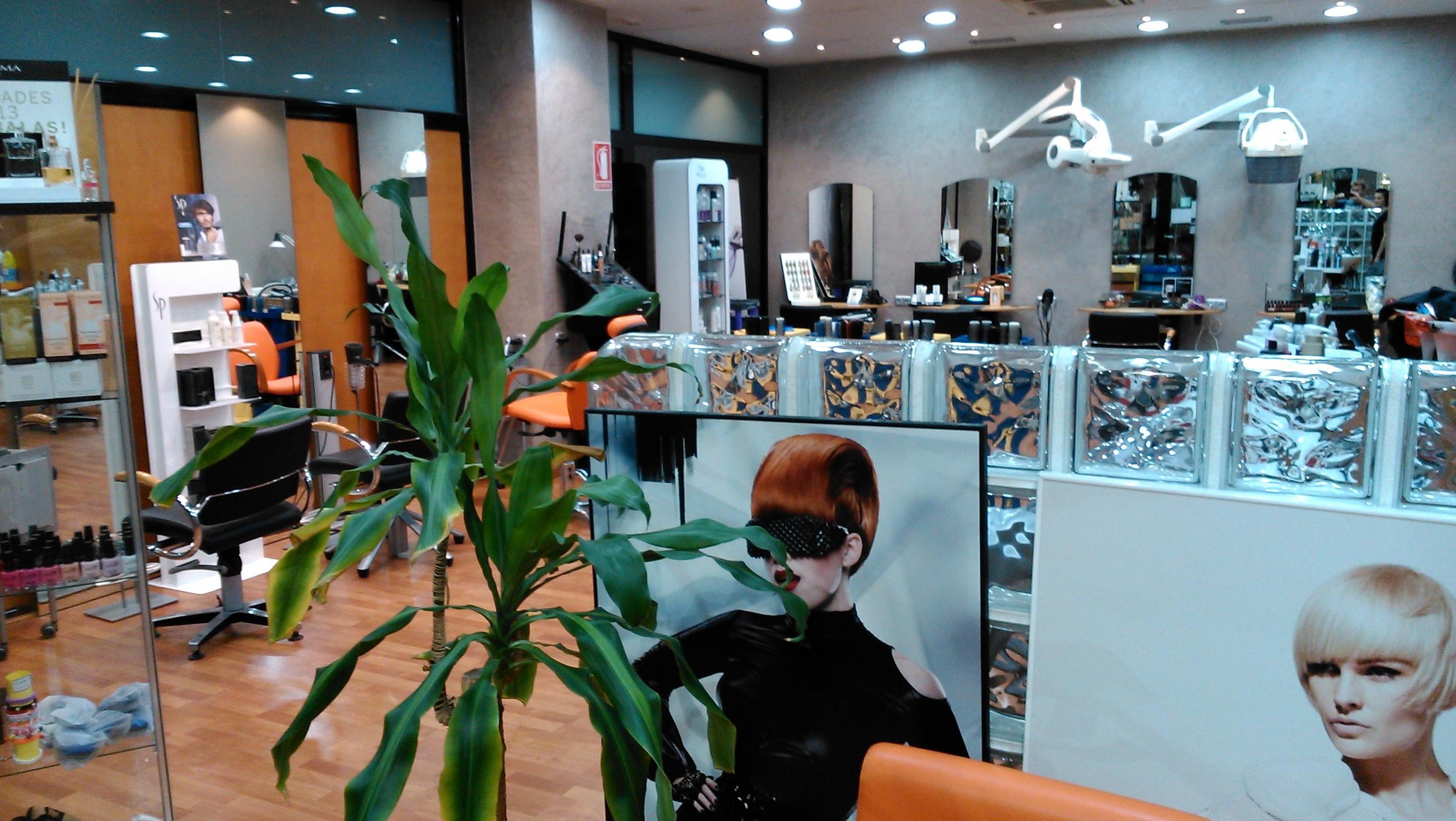 Vista parcial de la peluquería