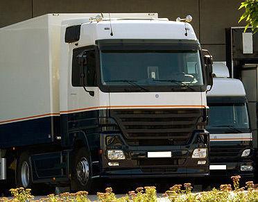 Servicio nacional: Servicios de Transportes Vidal Algarra