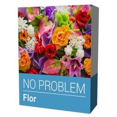 NO PROBLEM FLOR: Productos y Servicios de Stylepc