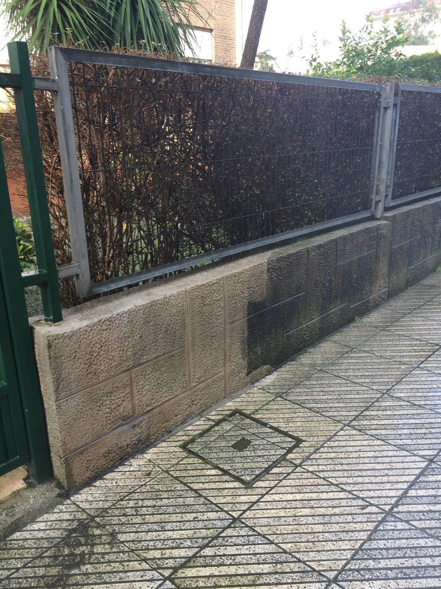 Limpieza de muros