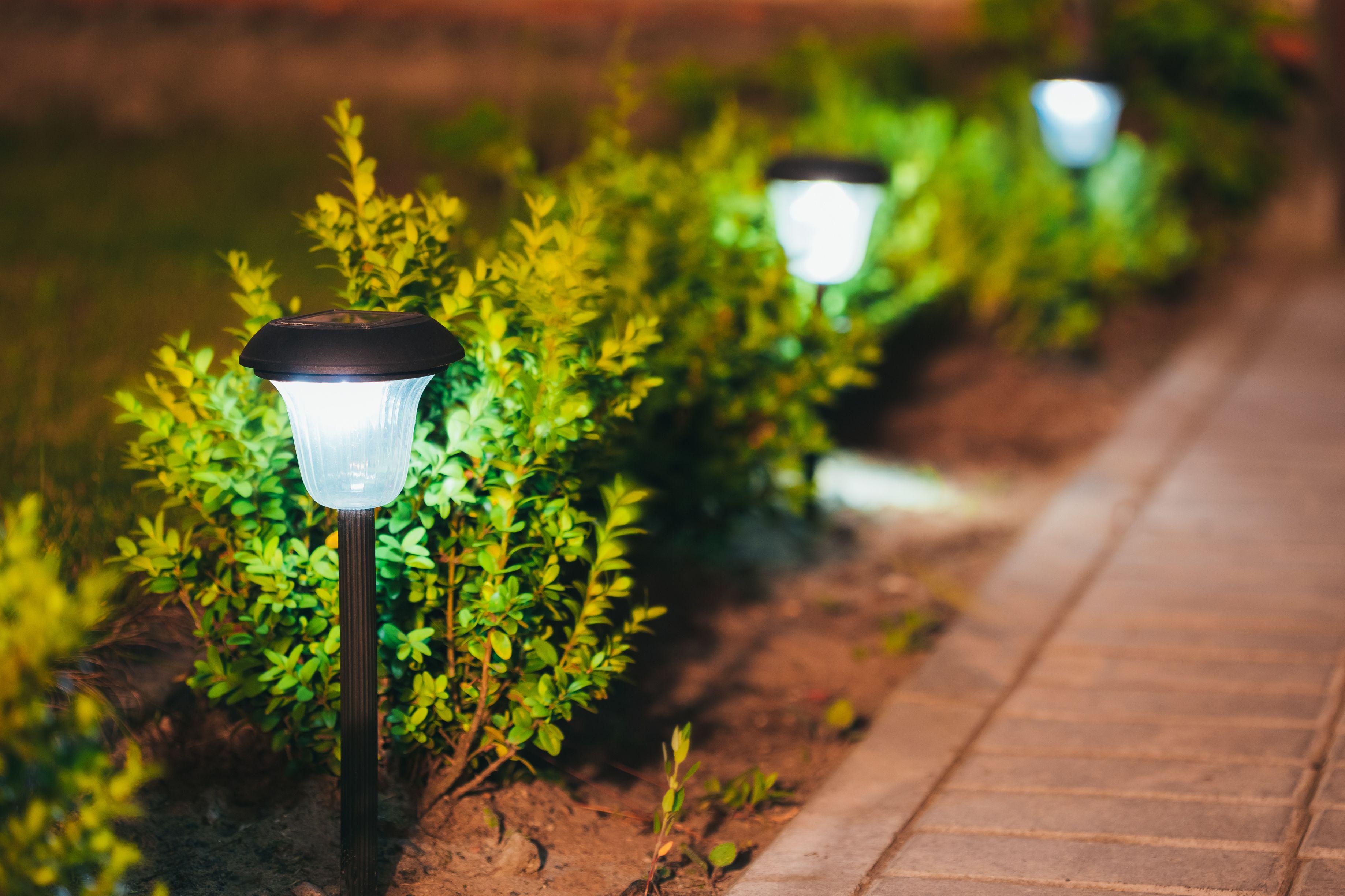 Jardineros: Catálogo de GTX Servicios