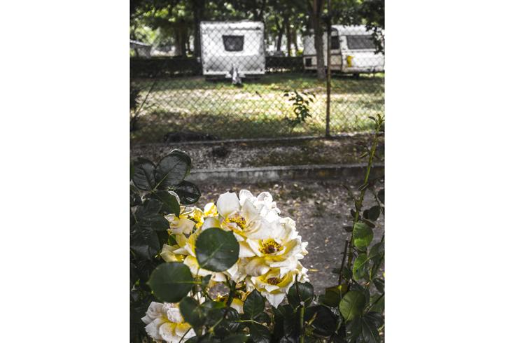 Foto 18 de Camping en Cabrerizos | Camping Don Quijote