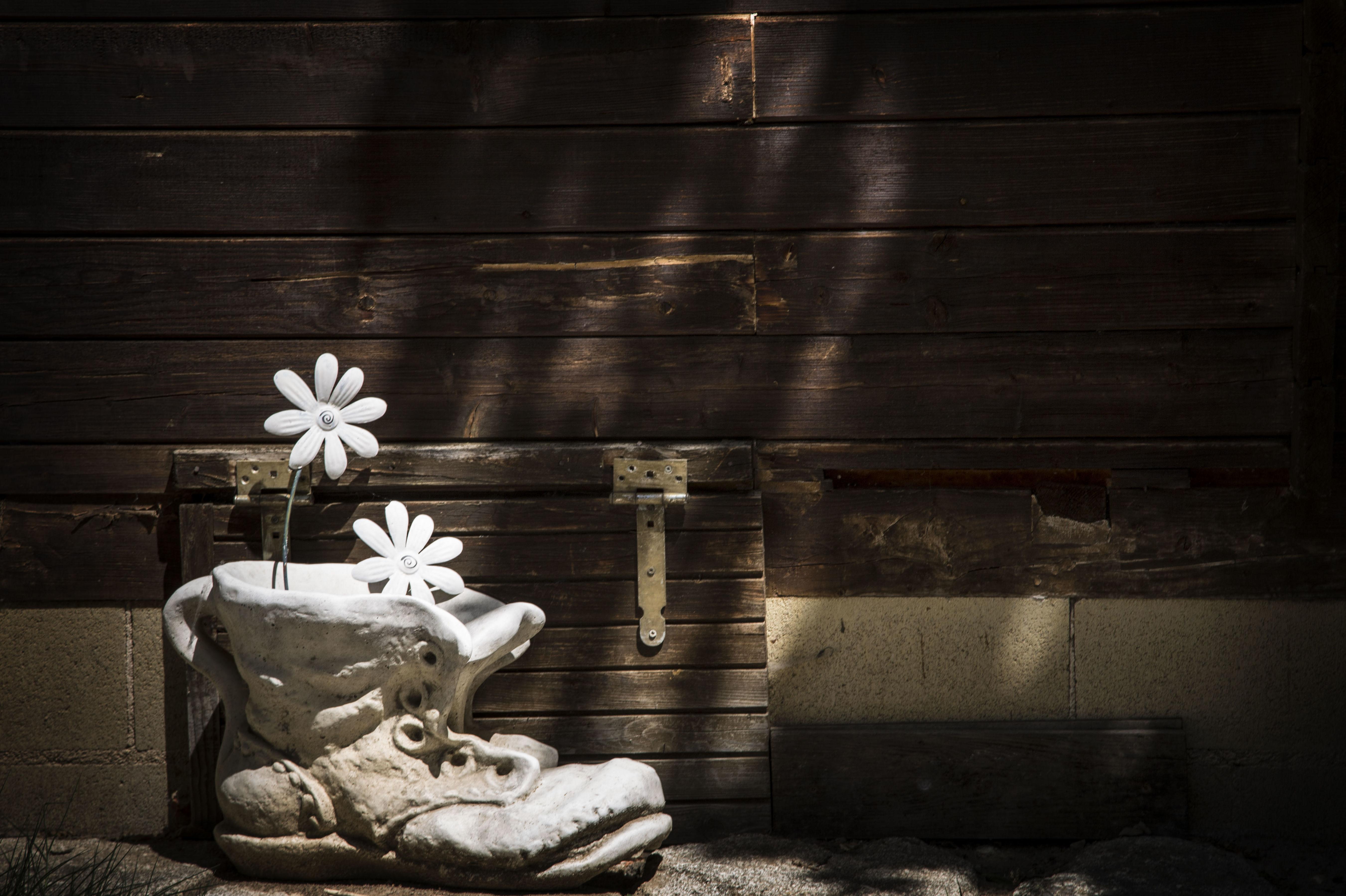 Foto 3 de Camping en Cabrerizos | Camping Don Quijote