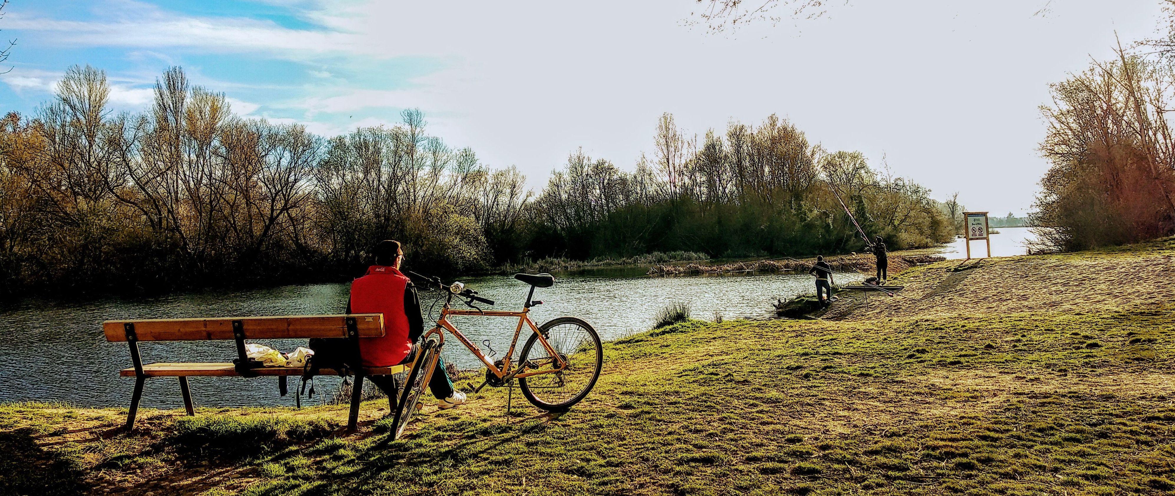 Foto 14 de Camping en Cabrerizos | Camping Don Quijote