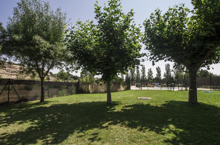 Zona verde cerca de la piscina.