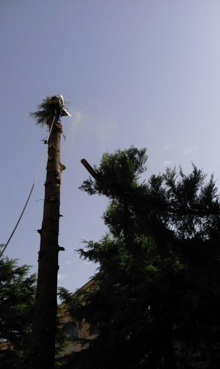 Foto 32 de Trabajos verticales en  | PGA Verticalidad