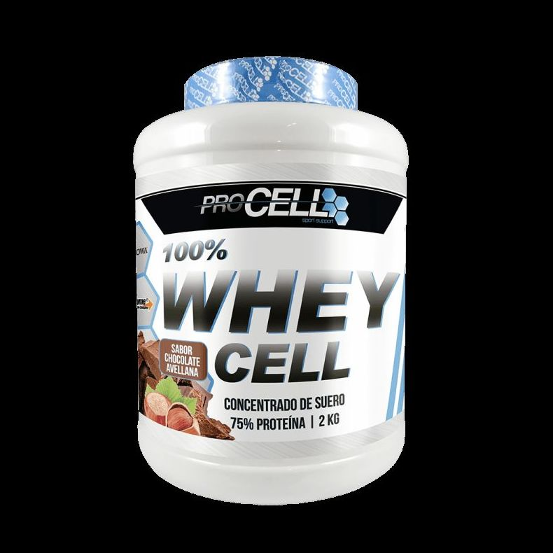 PROTEINA WHEY CHOCOLATE AVELLANA