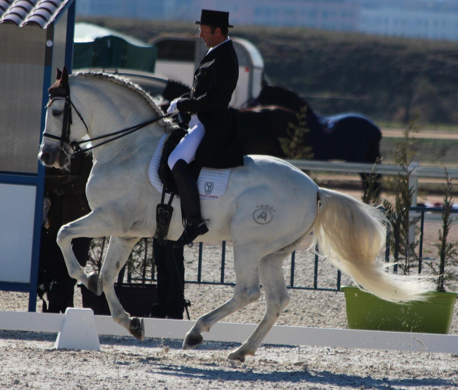 El buen cuidado de los caballos es nuestra prioridad