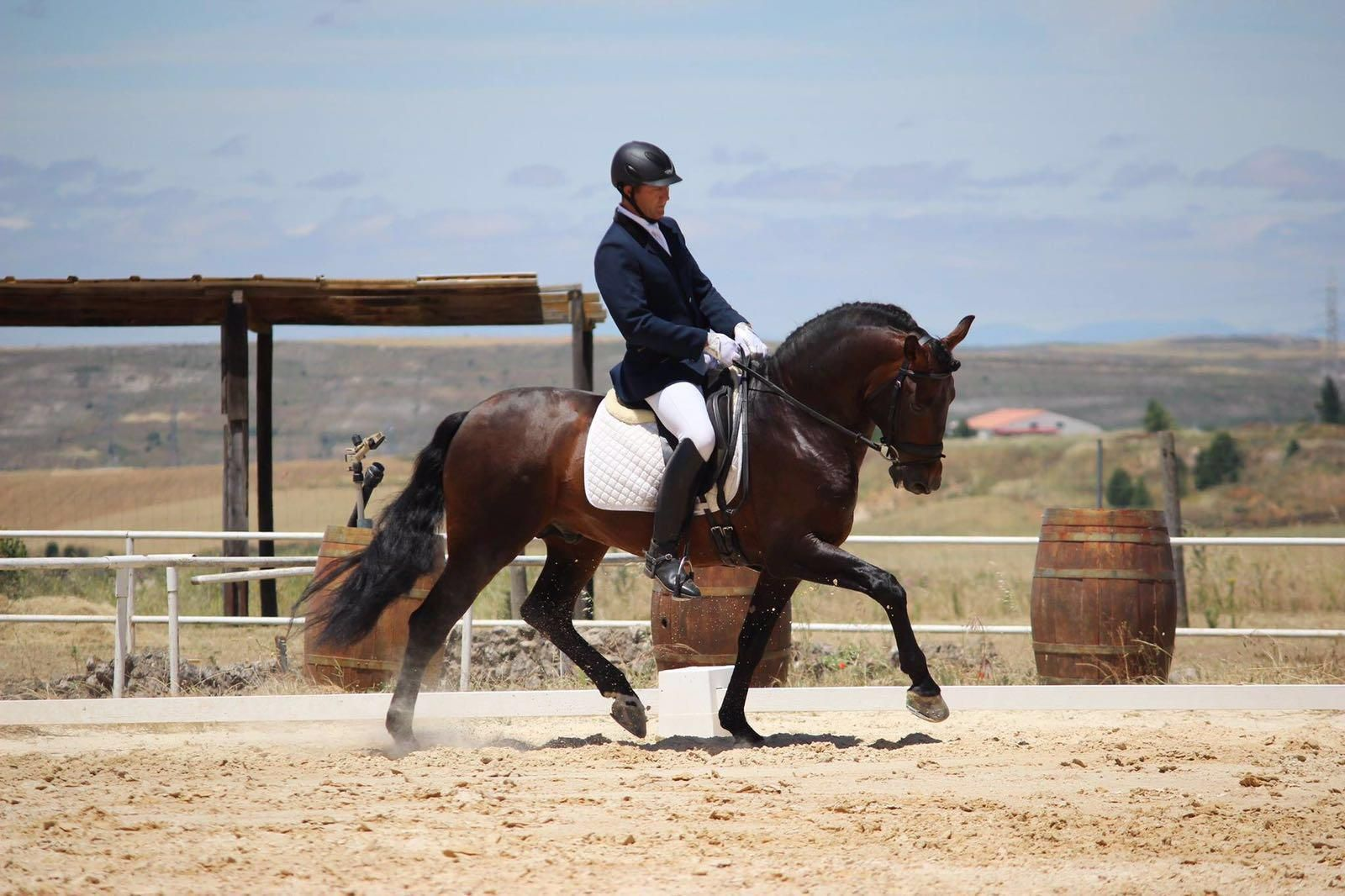 Doma de caballos en Colmenar Viejo