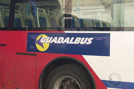 Líneas regulares: Servicios  de Guadalbus