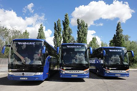 Alquiler de autobuses: Servicios  de Guadalbus