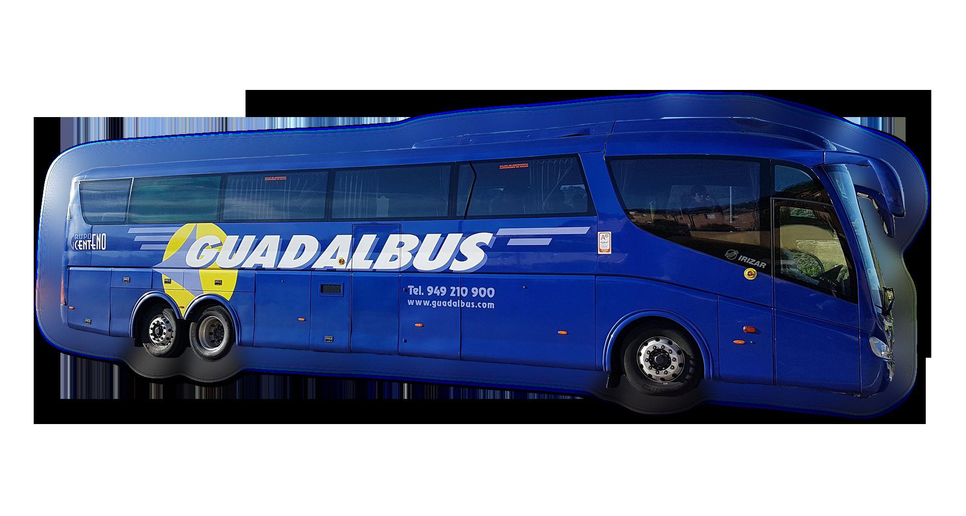 Servicio interurbano: Servicios  de Guadalbus