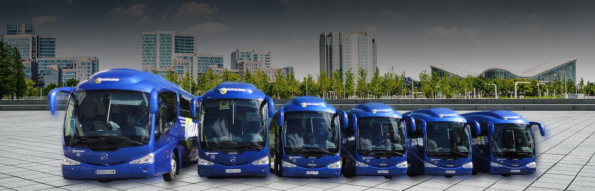 La flota de autobuses de Guadalbus