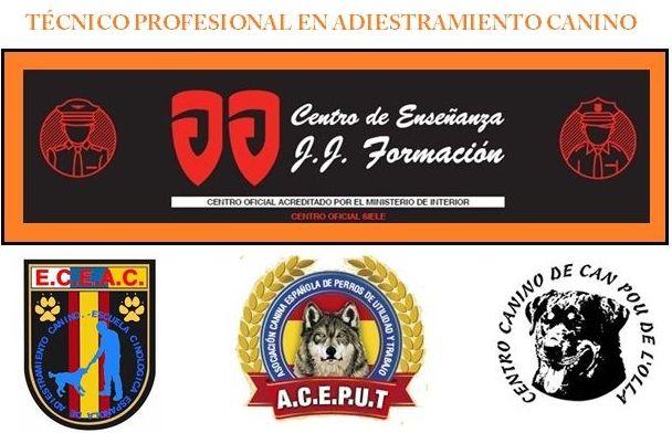Academia de oposiciones on line