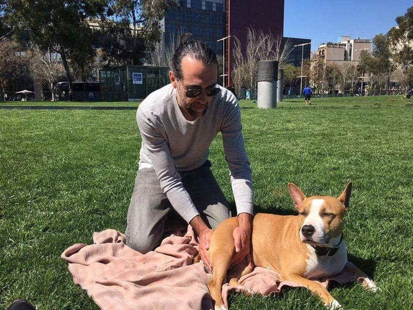 Terapeuta de animales en Barcelona