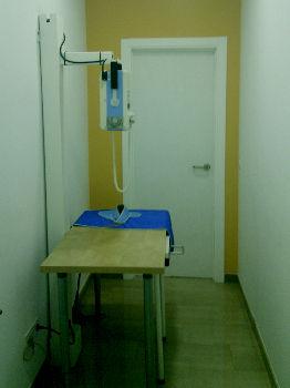 Foto 15 de Veterinarios en Valencia | Clínica Veterinaria Selvätica