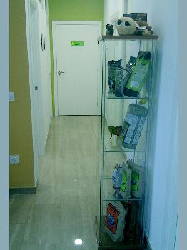 Foto 11 de Veterinarios en Valencia | Clínica Veterinaria Selvätica