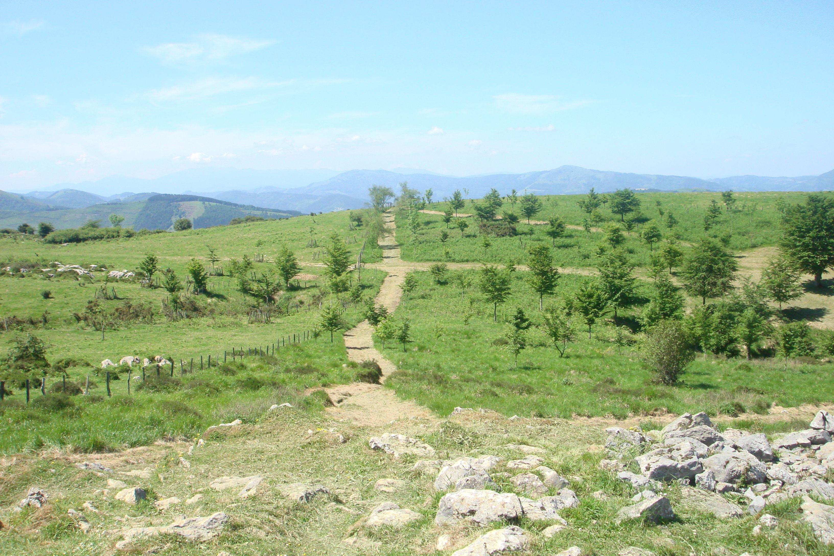 Foto 22 de Bares en Zarautz (Urdaneta) | Casa Rural Begoña