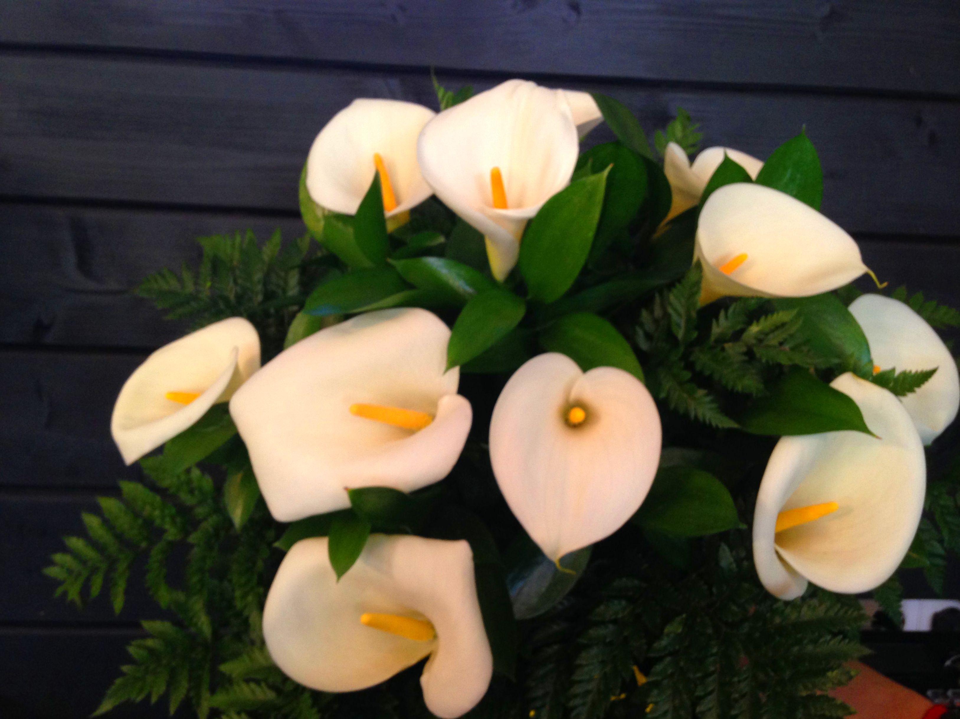 Servicio Interflora : Servicios  de Flores y viveros Prado