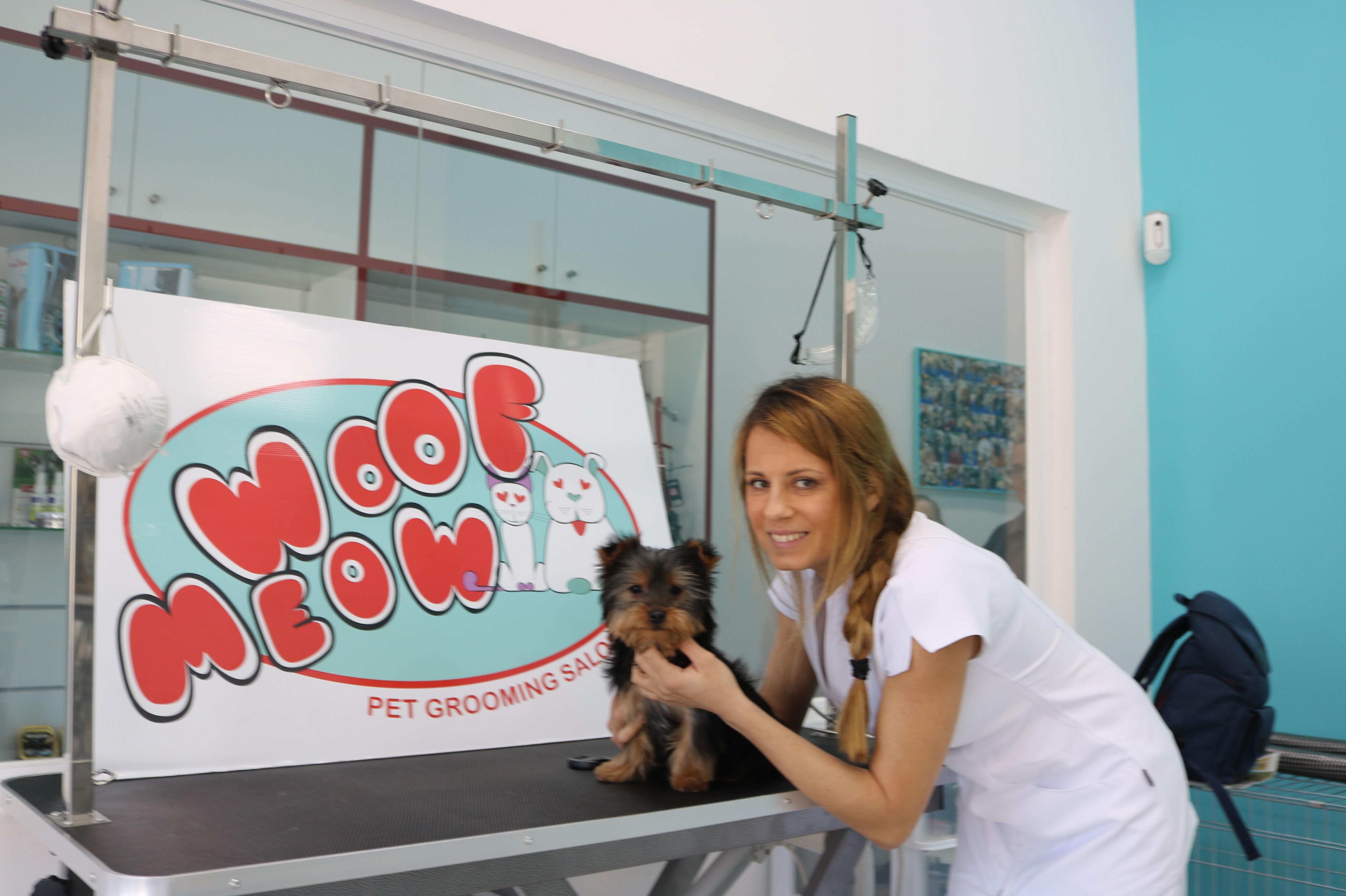 Foto 38 de Peluquerías caninas en Marbella | Academia de Estética Canina Woof Meow