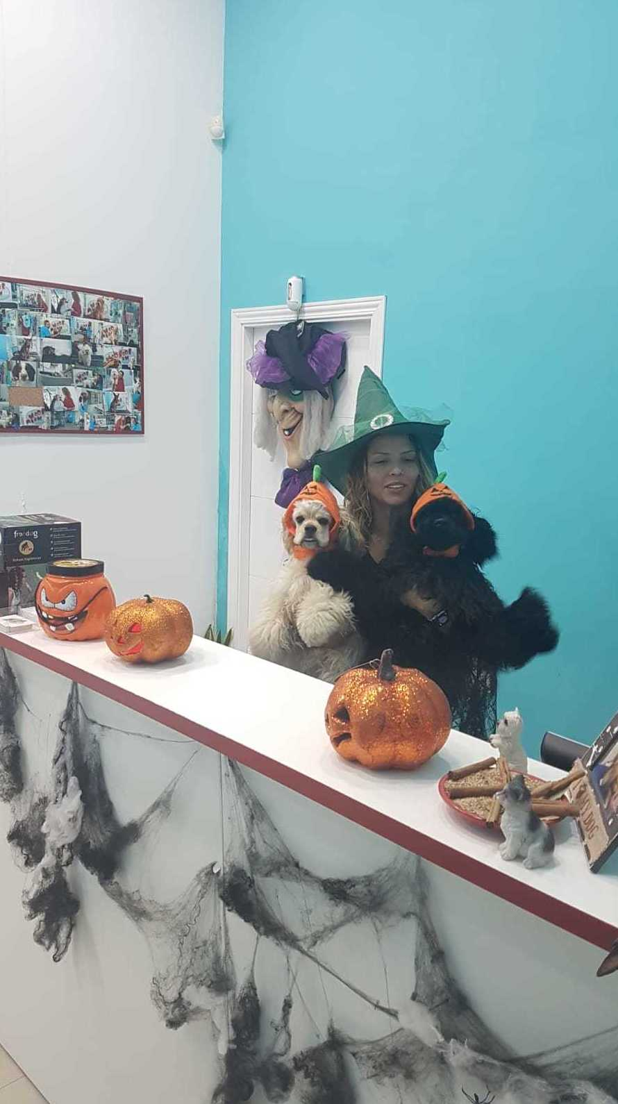 Feliz Halloween desde la familia Woof Meow!!