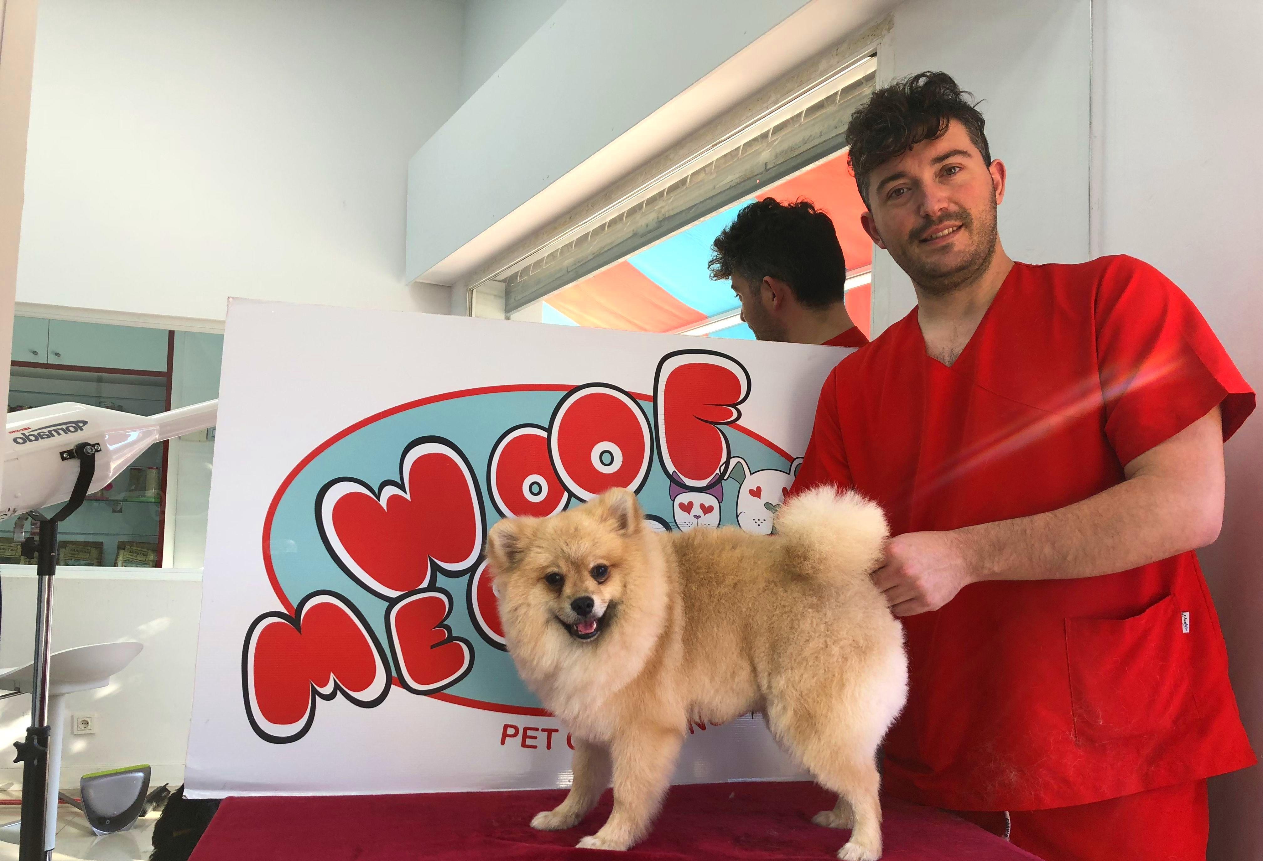 Foto 13 de Peluquerías caninas en Marbella | Academia de Estética Canina Woof Meow