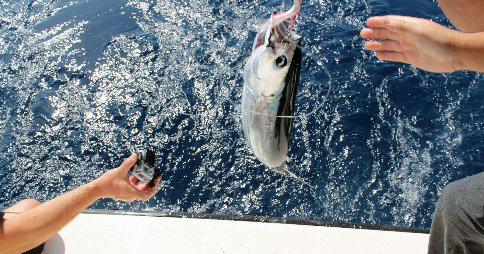 Pesca otoñal rodeada de amigos. Día perfecto!!!