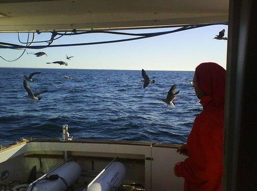 Jornadas de pesca deportiva