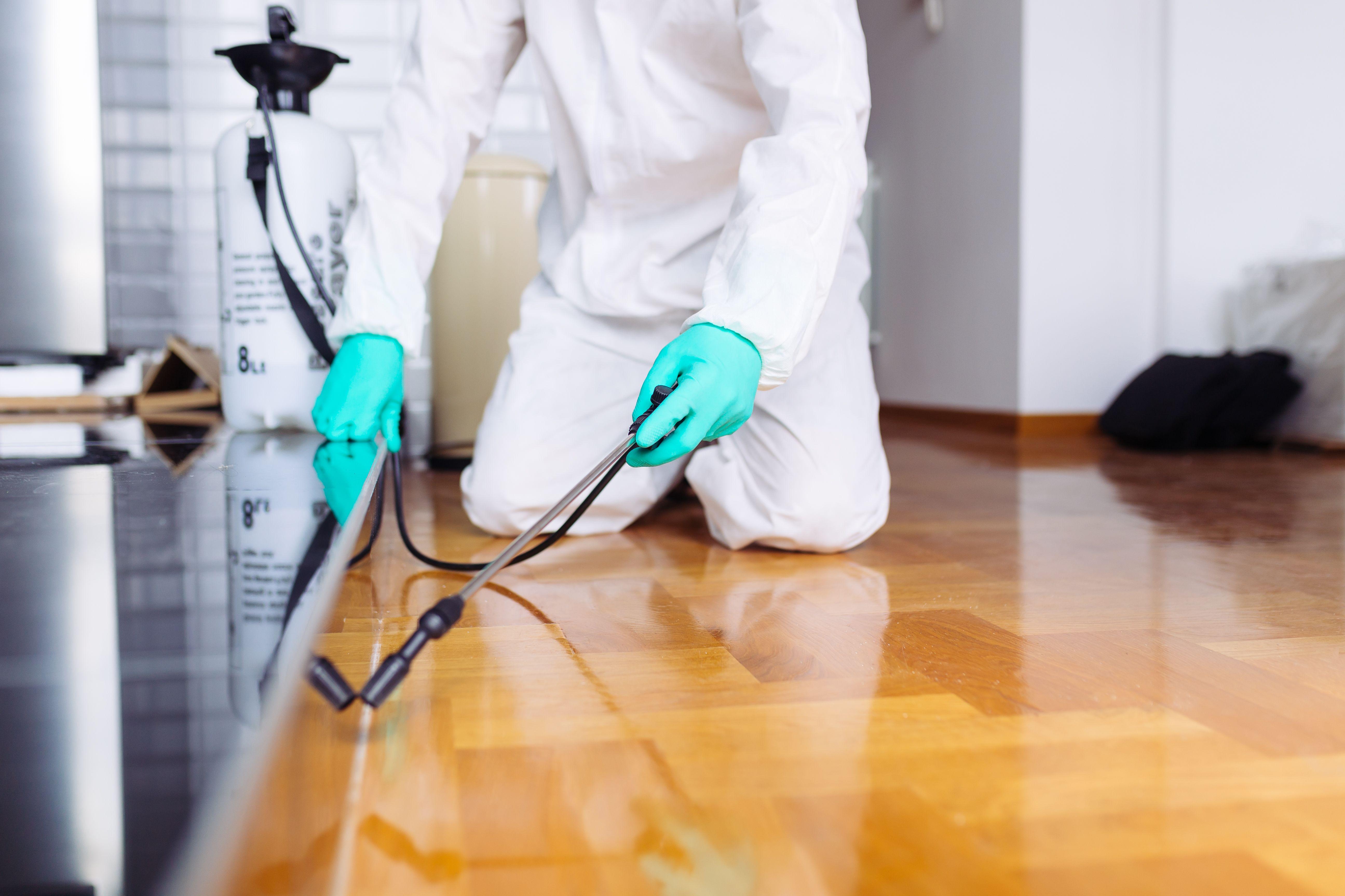 Tratamiento de plagas y desinfección: Servicios de Reciclados Deter-Oil