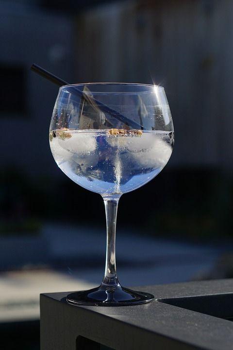 Gin tonic: Nuestra carta de La Reciclària