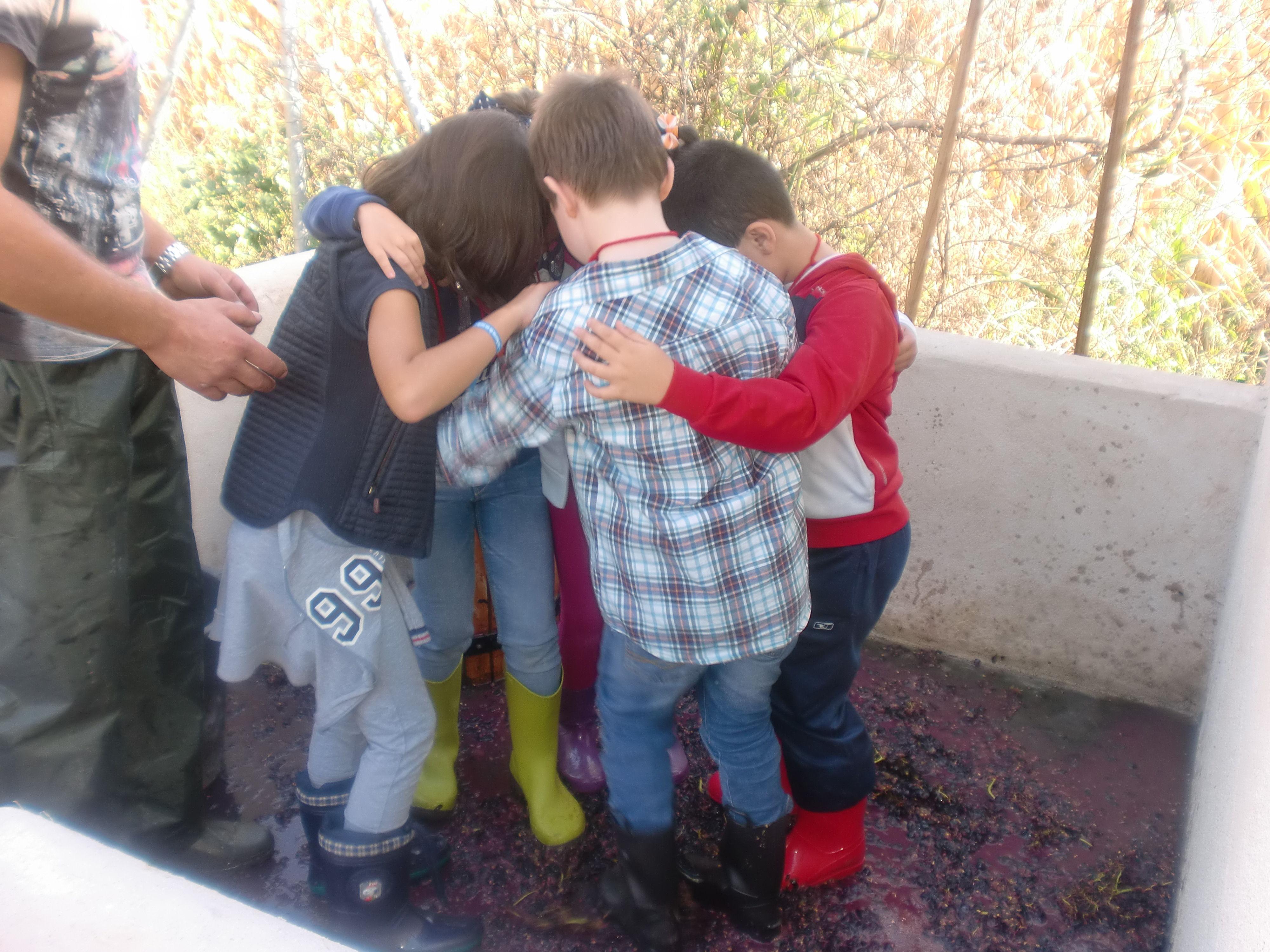 Foto 32 de Granja Escuela en Villaralbo | El Trillo Granja Escuela / Deluxe Jardinería
