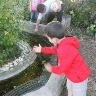 LOS SÁBADOS DE LA GRANJA: actividades de El Trillo Granja Escuela / Deluxe Jardinería
