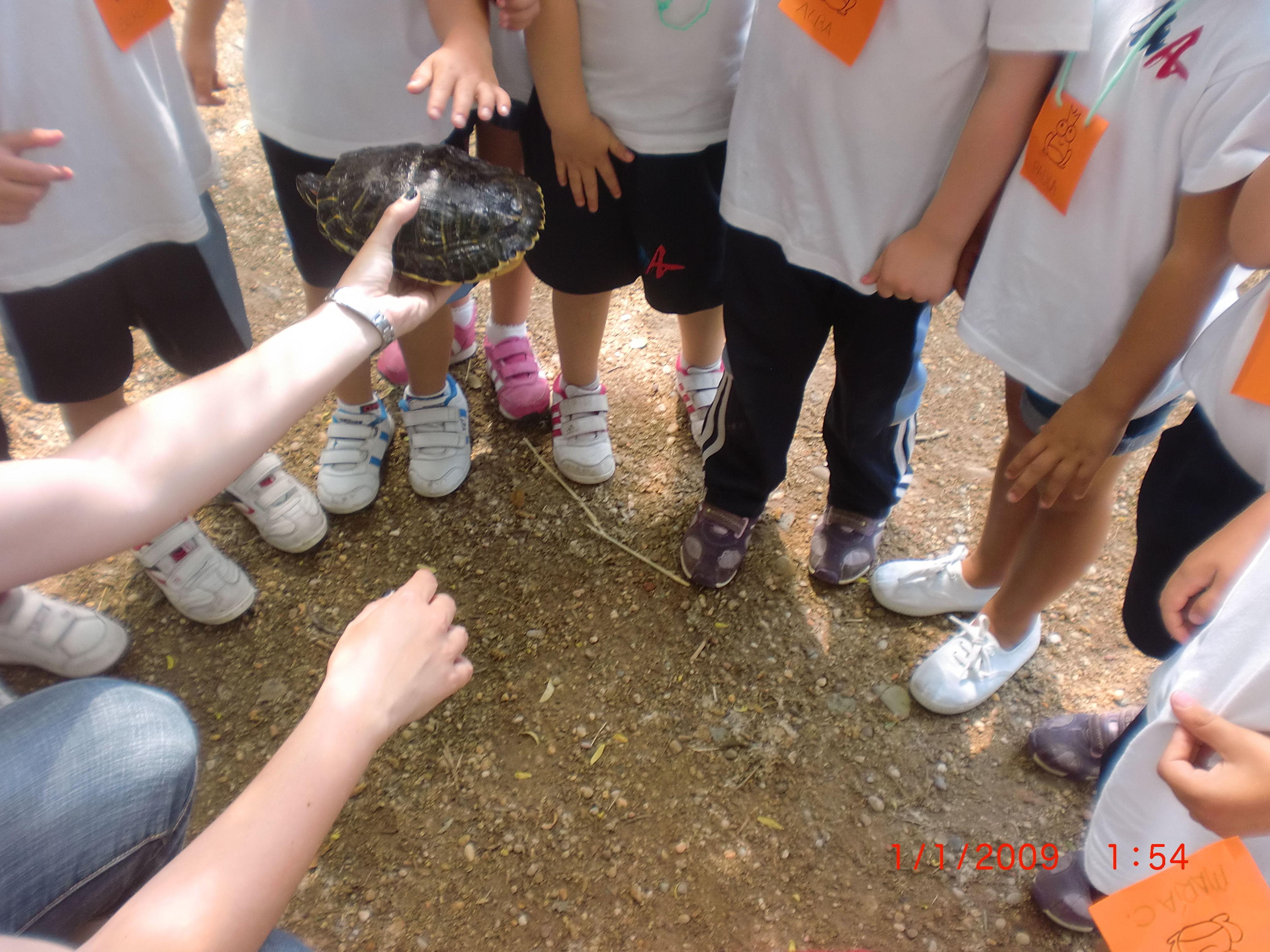 Foto 2 de Granja Escuela en Villaralbo | El Trillo Granja Escuela / Deluxe Jardinería