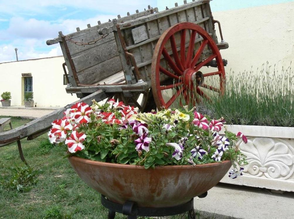 DISEÑO Y PAISAJISMO: actividades de El Trillo Granja Escuela / Deluxe Jardinería