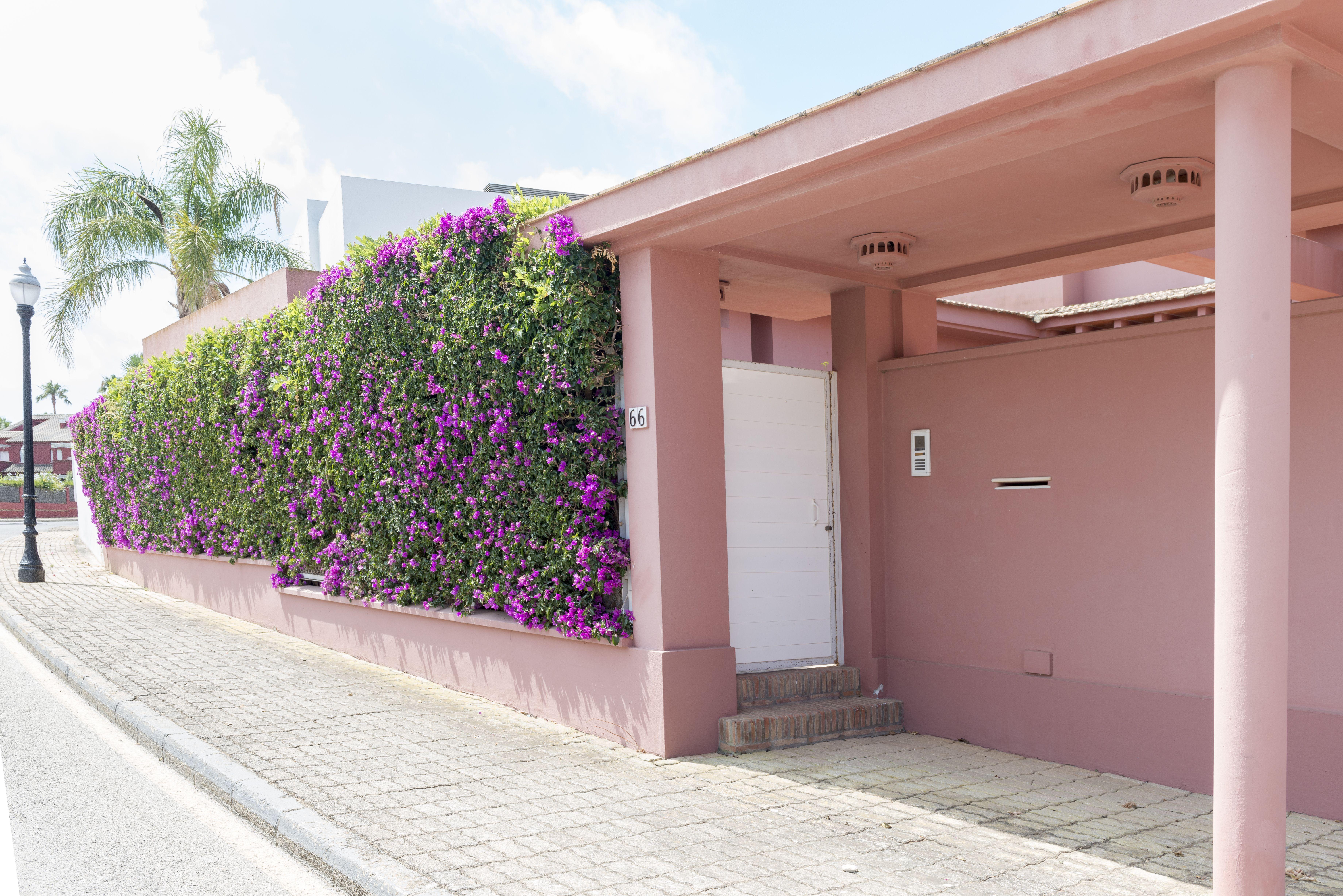 Diseño y mantenimiento de jardines en Chiclana de la Frontera, Cádiz