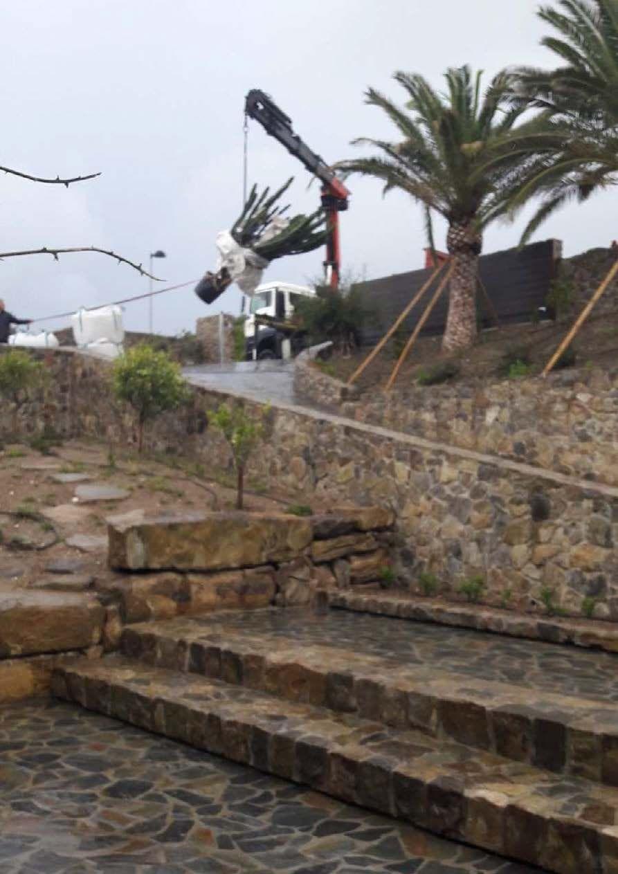 Diseño de jardines exteriores en Chiclana de la Frontera, Cádiz
