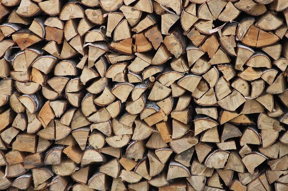 Ensayo de autor noruego apela por el consumo de leña como combustible sostenible y eficaz