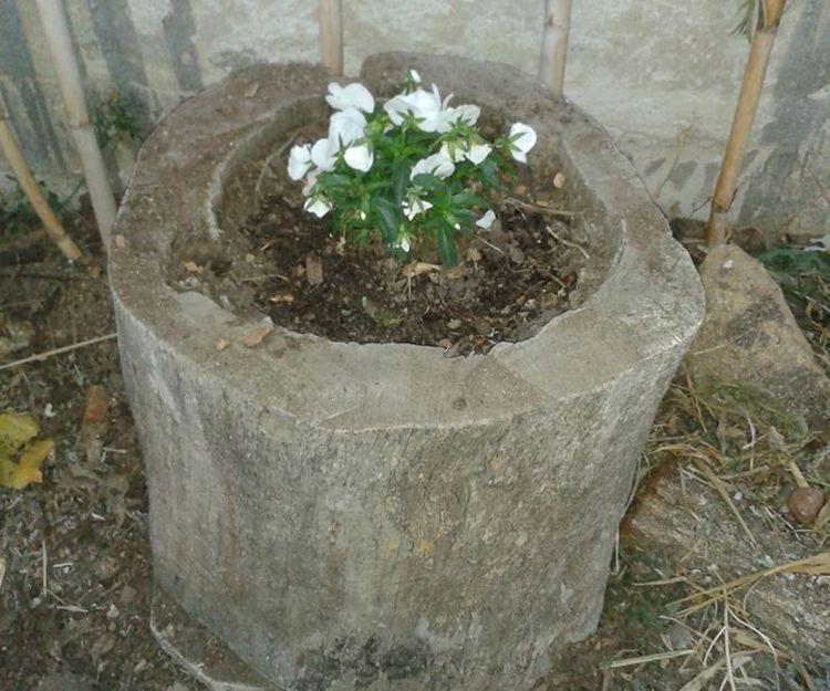 Detalle para tu jardín